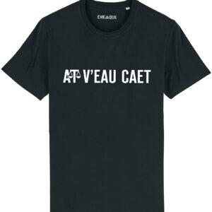 AT VEAU CAET - advocaat